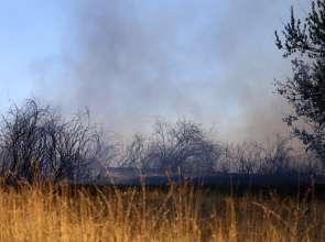 Сухи треви горяха край Тутракан вчера